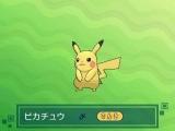 Pokemon SL - 7