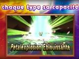 Pokemon Soleil Lune - Capacite Z plante