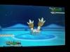 Pokémon XY - Binacle