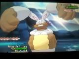 pokemon-xy-diggersby-1