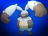 pokemon-xy-diggersby-2