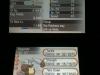 pokemon-xy-diggersby-3