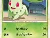 025141_p_chikorita.jpg