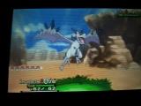 Pokémon XY - Méga-Ptera