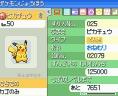 20090116_onemuri-pikachu_event.jpg