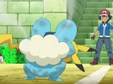 pokemon-xy-002-01501