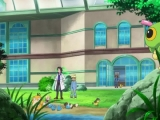 pokemon-xy-002-11001