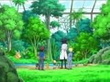 pokemon-xy-002-12501