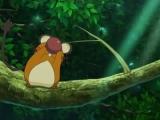 pokemon-xy-003-15501