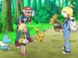 pokemon-xy-003-26501