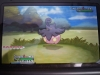 Pokémon XY - Pumpkaboo