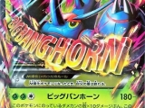TCG Pokemon - Rising Fist 005