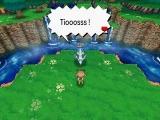Pokemon ROSA - Ile du Sud 09