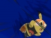 Pokemon ROSA - Screen Pikachu Catcheur 05