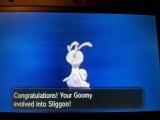 Pokémon XY - Sliggoo