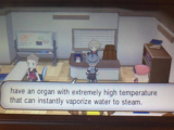 Pokemon XY - Volcanion 10
