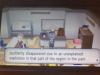 Pokemon XY - Volcanion 30