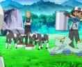 Et oui, il y en a des Pokémon à nourrir !
