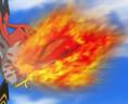 Braisillon VS Flambusard