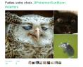 Pokémon, Version Réelle